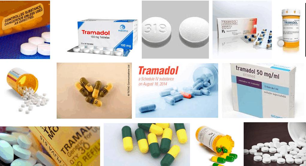 tamadol-tracedol-tramadol médicament-tramadol drogue-tramadol morphine-tramadol et alcool-tramadolposologie-tramadol danger-tramadol effets secondaires-tramadol composition-